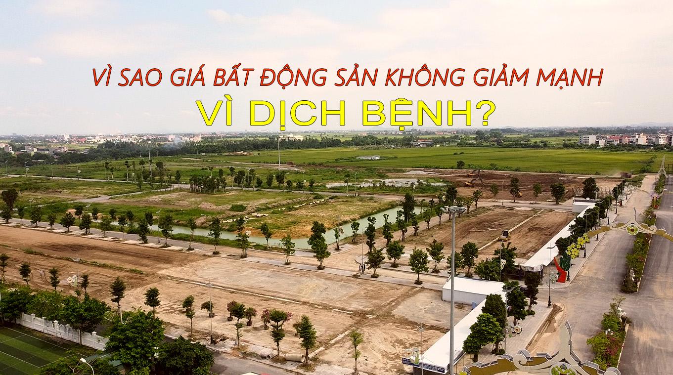 bat-dong-san-dat-nen-tu-son